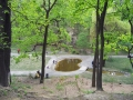 Ботанический сад имени А.В.Фомина