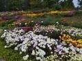 Ботанический сад имени Н.Н.Гришко