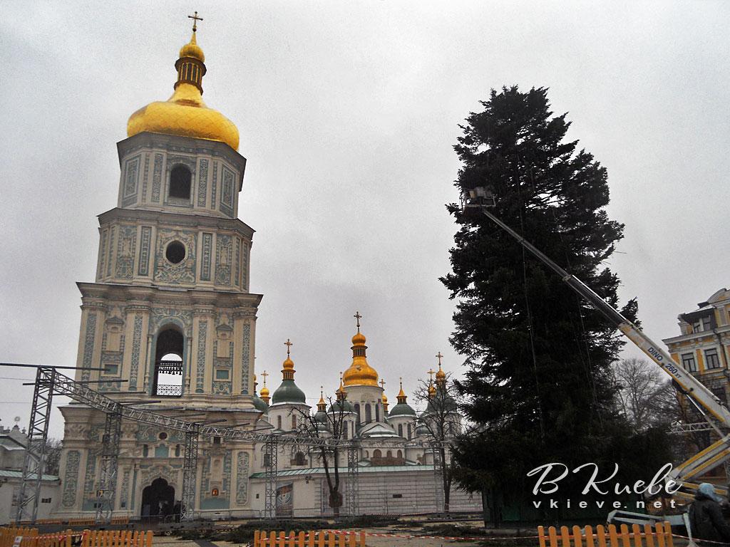 Установка главной елки 2018 в Киеве
