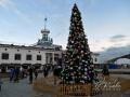 Новогодняя елка 2016 в Киеве. Почтовая площадь