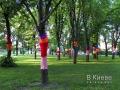 Одетые деревья в Соломенском парке Киева. 2016 год