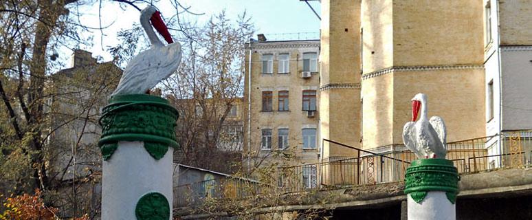 pelikany-na-krasnoarmejskoj-01