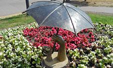 Сердце на ладони под зонтиком в парке «Позняки»
